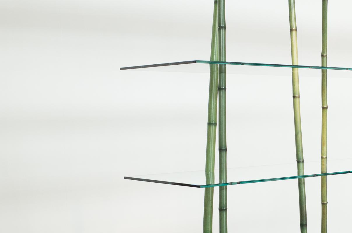 Regal von Shikai Tseng